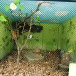 Kleintiergehege seit 2012 saniert (1)